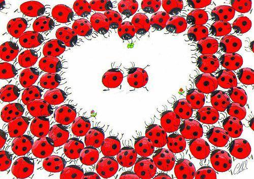 http://je-suis-un-morse.cowblog.fr/images/lgrepor000025.jpg
