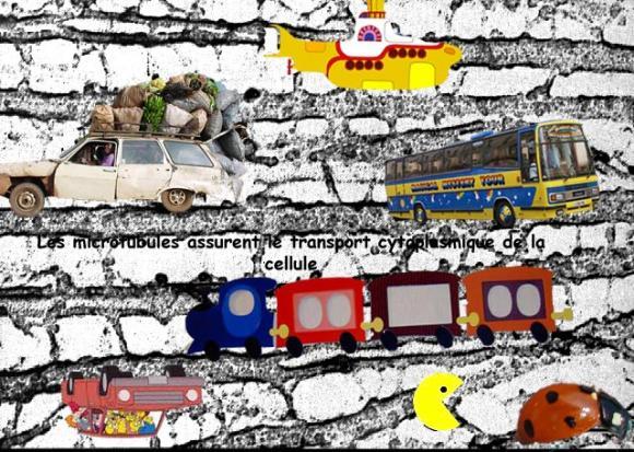 http://je-suis-un-morse.cowblog.fr/images/or04copie.jpg